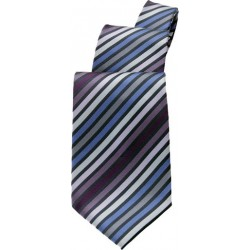 Blue/Purple Stripe Tie - TPMS