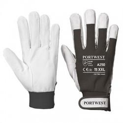 Tergsus Glove - A250